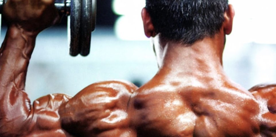 How To Build Strong Round Shoulders Fast Therippedathletecom
